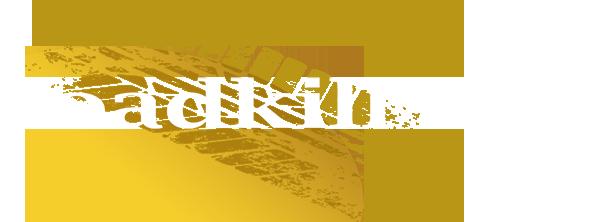 TDC logo 2x